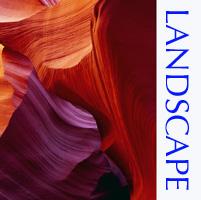 LANDSCAPE TOP.jpg